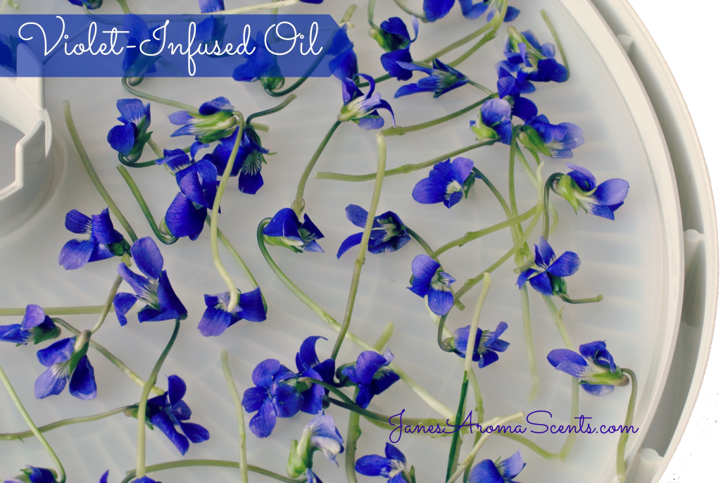 infused violet oil